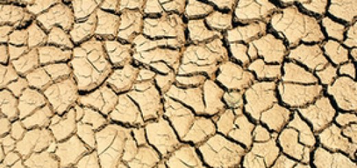 kuraklık çatlak toprak